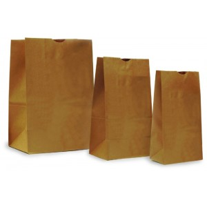 Paper Evidence Bags - Unprinted