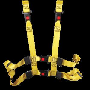 EVS Belts